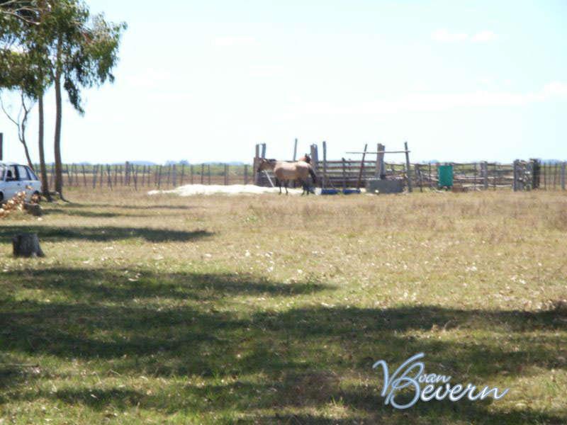 Campo para pastoreo de 116 ha en Rocha - drl901