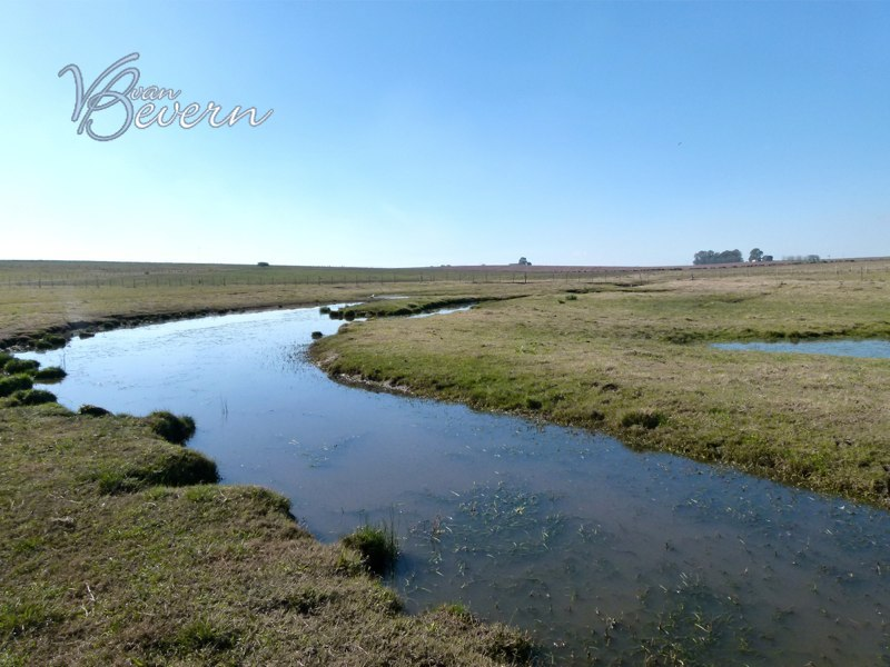 647 acres farm in Soriano - sre101