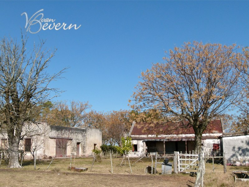 275 acres farm in Soriano - sre103