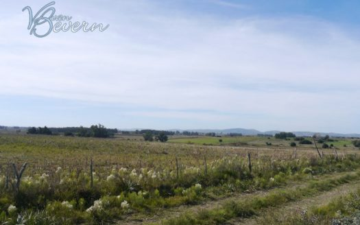 25 ha sin construir en zona rural - SLL391