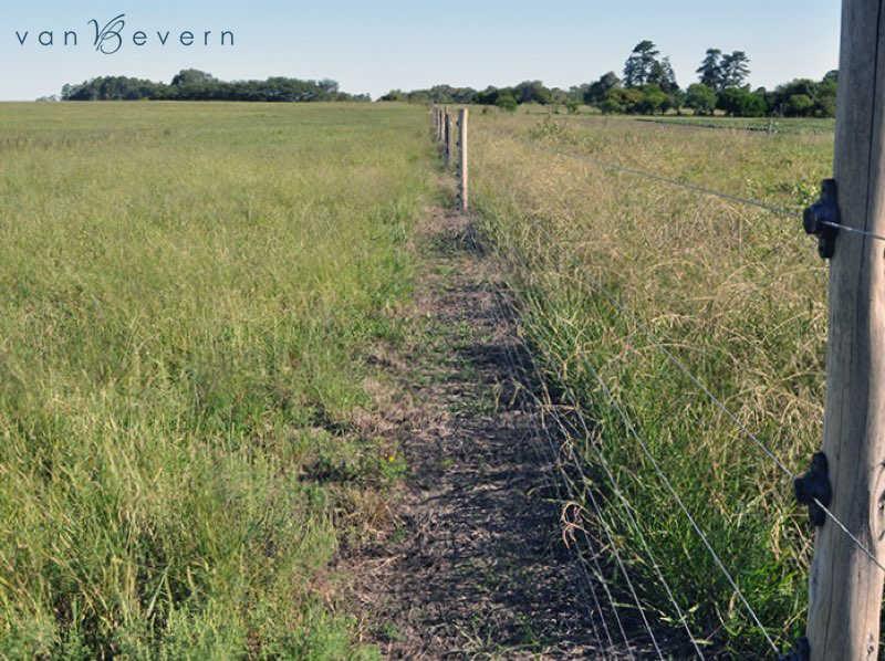 10 ha Grundstück in Blancarena, Departamento Colonia – DCL709