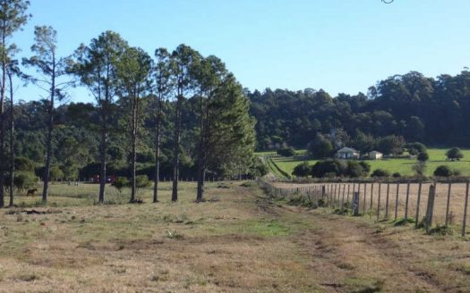 Undeveloped 19.5 acres chacra near Punta del Este - PBC533