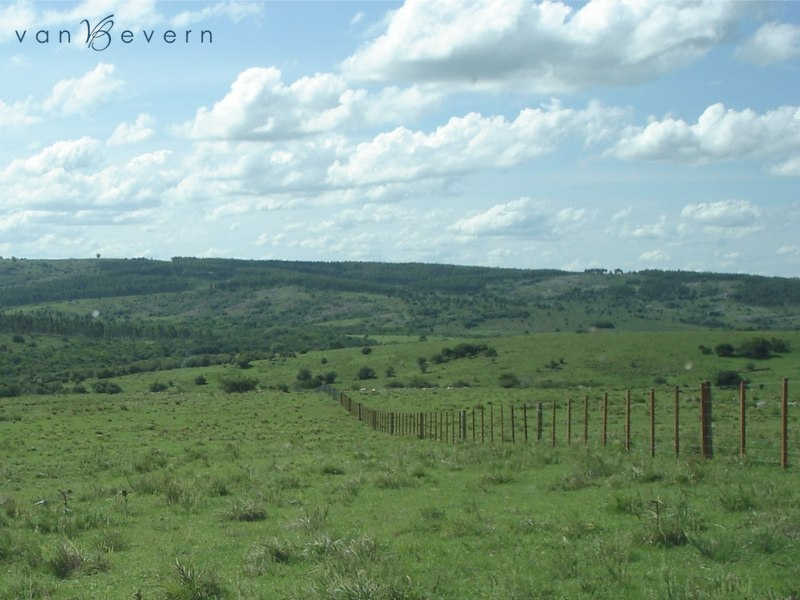 1,960 acres ranch in Lavalleja - DLE541