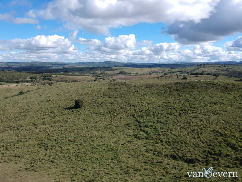 130-acres property near Pueblo Edén - RDL815