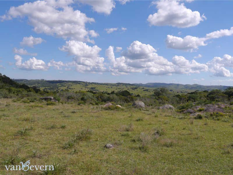25-acres chacra on Ruta 39 - RTC818
