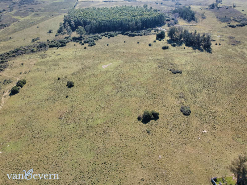 95 acres of land with a view of the Sierra de las Ánimas - PAL020