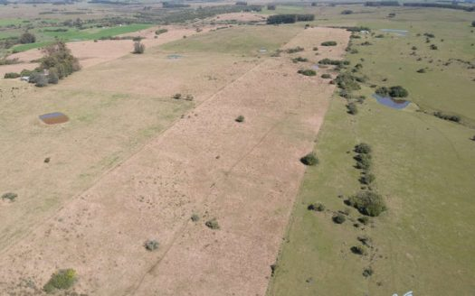Undeveloped 17 acres property, north of José Ignacio - JIC026
