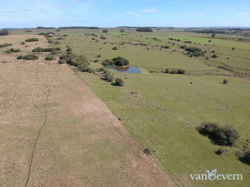 Unbebautes 7 ha Grundstück nördlich von José Ignacio - JIC026