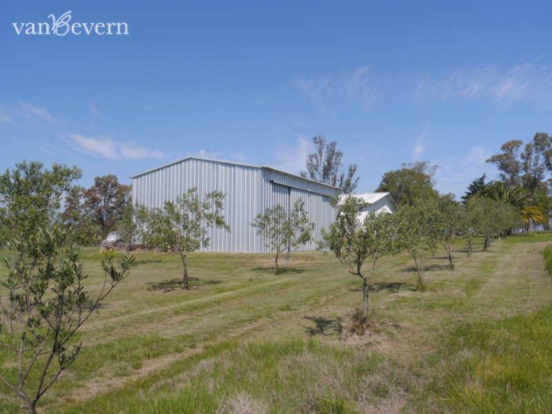 11 ha Olivenplantage mit kleinem Wohnhaus - SLI101